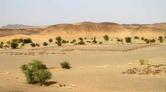 Khafour01